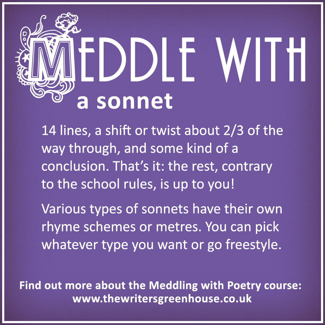 14 lines, a shift or twist about 2/3 of the way through, and some kind of a conclusion. That's it: the rest, contrary to the school rules, is up to you! Various types of sonnets have their own rhyme schemes or metres. You can pick whatever type you want or go freestyle.