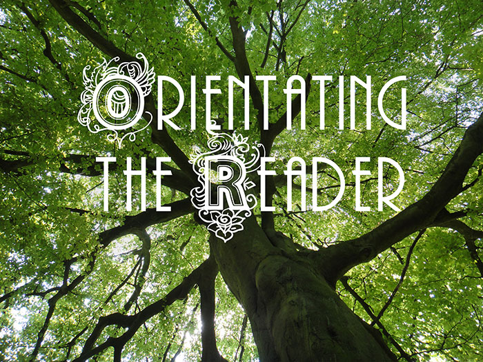 Orientating the Reader writing workshop