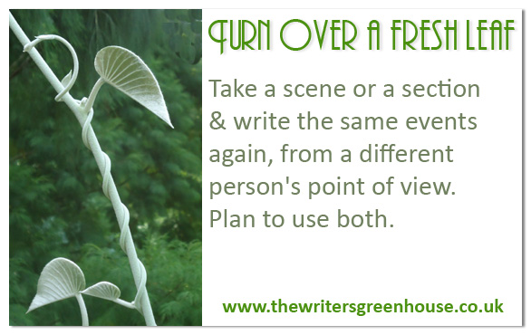 Take a scene or a section & write the same events again, from a different person's point of view. Plan to use both.