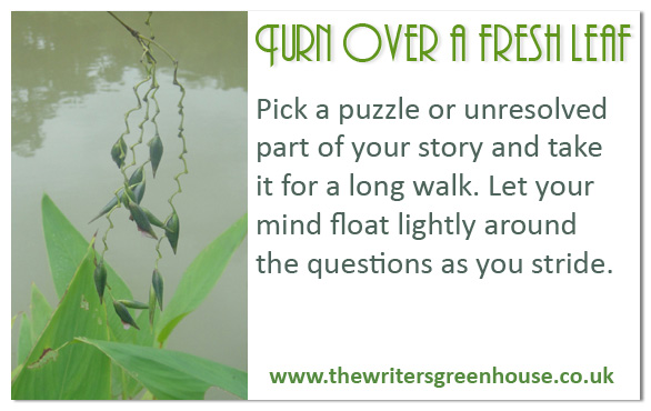 Pick a puzzle or unresolved part of your story and take it for a long walk. Let your mind float lightly around the questions as you stride.