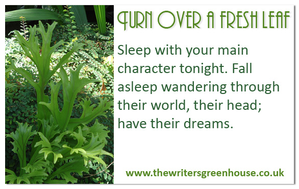 Sleep with your main character tonight. Fall asleep wandering through their world, their head; have their dreams.